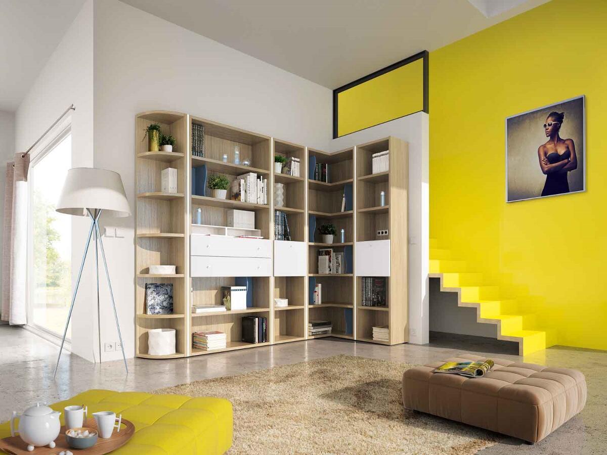 2 modulable biblioth que brou. Black Bedroom Furniture Sets. Home Design Ideas